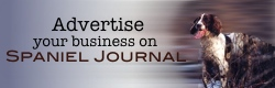 Spaniel Journal